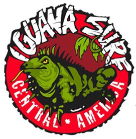 iguanasurf