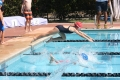 swim-meet-4